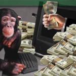 image money and monkey